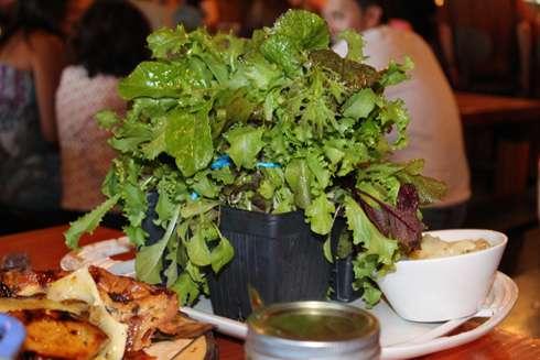 pdc 2013 apple season salad