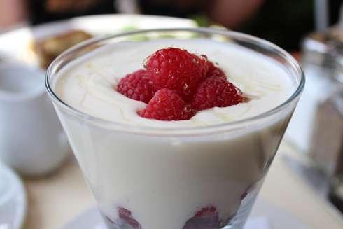 brasserie bernard yogourt